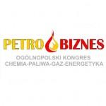 Petrobiznes 2011