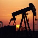 Wydobycie ropy naftowej w Polsce w 2008 roku